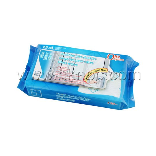 Glass Wipes 25pcs
